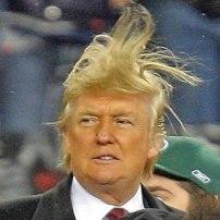 Trump-wild-hair-image-from-fark.com-2